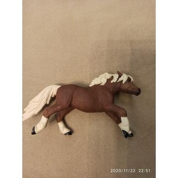 Safarii model konia konik koń