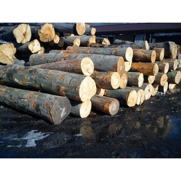 buk drewno drzewo  kominkowe