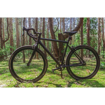 Loca bike - single speed commuter