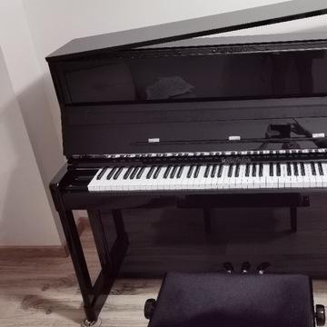 Czarne pianino lakierowane HOFFMAN