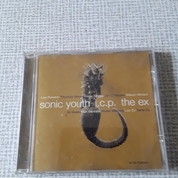 SONIC YOUTH / ICP / THE EX - IN THE FISHTANK