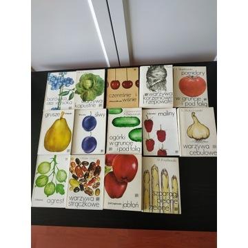 Ogród, uprawa: owoce, warzywa, poradniki 14 sztuk