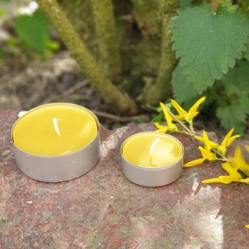 Świeczki z wosku pszczelego tealighty małe 3,5cm