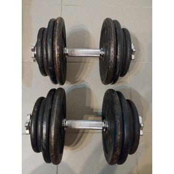 Hantle 2 x 31 kg Obciążenie 62 kg Domyos Marbo pro