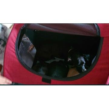Transporter dla psa do 60 kg