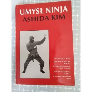 Umysł ninja - Ashida Kim