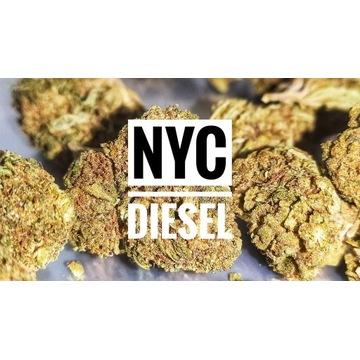 """NYC Diesel"" CBD 16% susz konopny 25g"