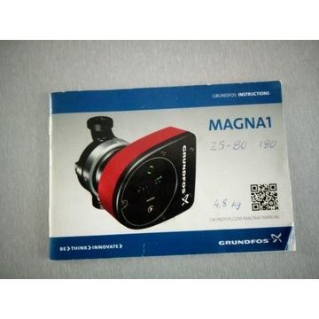 Pompa obiegowa Grundfos Magna 1
