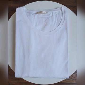 Evolution,  Duże Rozmiary,  koszulka męska 4xl