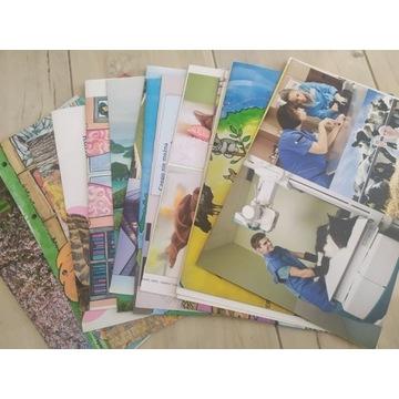 Zestaw 28 plakatów wyd. RAABE przedszkole dziecko