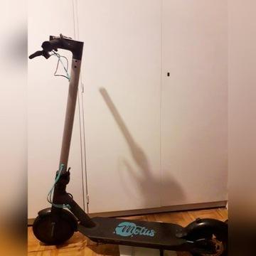 Hulajnoga Elektryczna Motus FitLovers 8,5