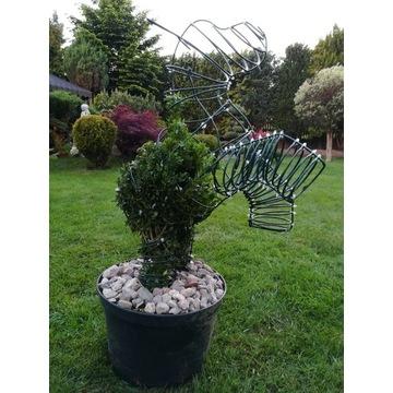 Topiary, formowane rośliny, rzeźby z roślin