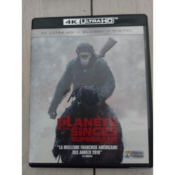 Wojna o Planetę Małp 4K Ultra HD Blu-ray Lektor PL