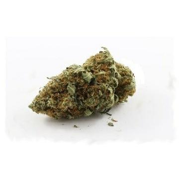 100G Susz Jack Herer 11% CBD 0.2% THC