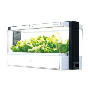 Green Farm hydroponiczna szklarnia LED grow roślin