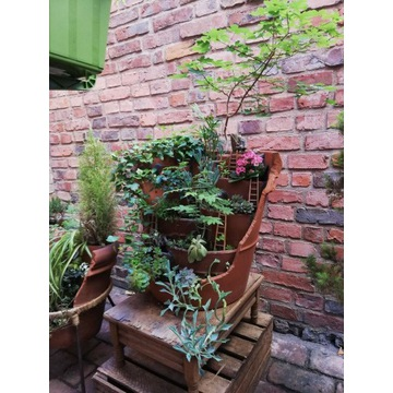 """Magiczny Ogród bonsai w donicy """"Mnich z wędką"""""""