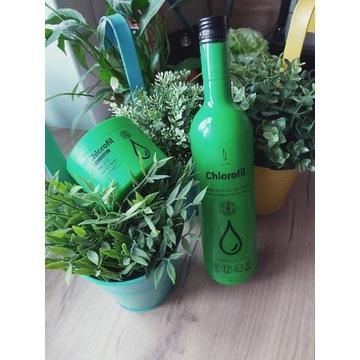 Naturalny chlorofil