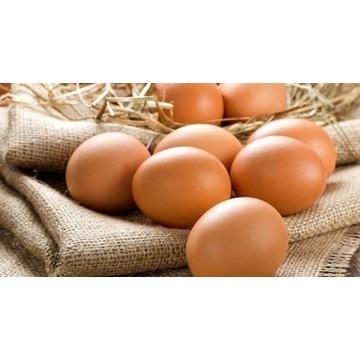 Świeże jajka wiejskie z wolnego wybiegu