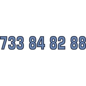 733 84 82 88 ZŁOTY NUMER STARTER PLAY