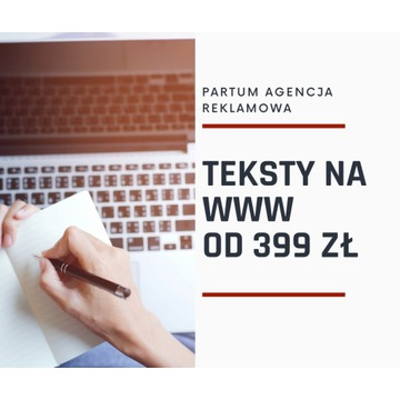 Teksty na WWW 399 PLN
