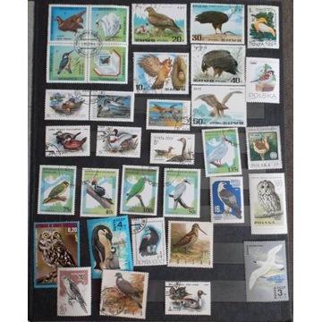 ptaki - mix znaczków