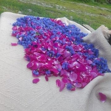 Syropy kwiatowe/ ziołowe 900 ml