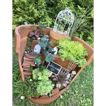 Mini Ogród w doniczce Fairy garden in a broken pot