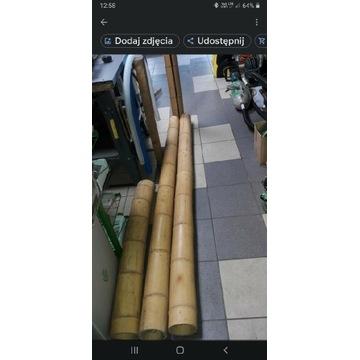 Bambus, Rury bambusowe grube...
