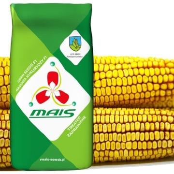 Kukurydza EURO FAO 260 (KISZONKA) 80 tyś nasion