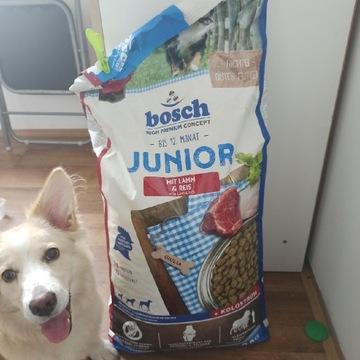 Karma dla psa Bosch Junior
