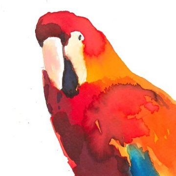 Akwarela - Papuga do pokoju dziecka
