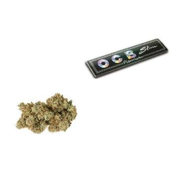 1G Susz White Widow 17% CBD 0.2% THC + GRATIS