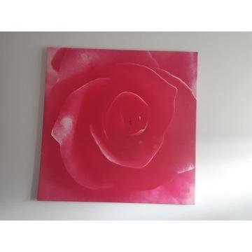 obraz róża na płótnie stan dobry