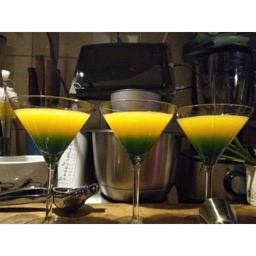 Kieliszki Martini koktajlowe 260ml , 6 sztuk