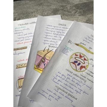Notatki z biologii do matury szkoła średnia