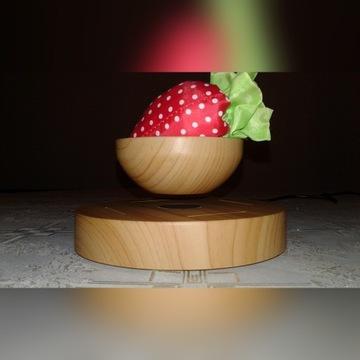 Lewitujące drzewko (SPODEK) Bonsai (Air Bonsai).