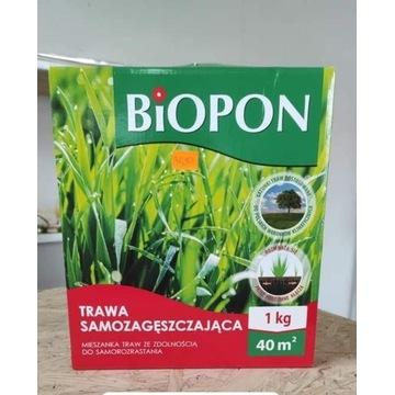 Trawą samozagęszczajaca Biopon 1 kg