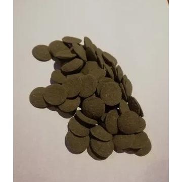 Tabletki zielone dla glonojada krewetek raków