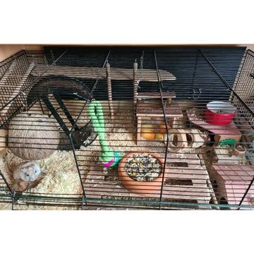 Zestaw klatka akwarium dla myszoskoczka/gryzonia