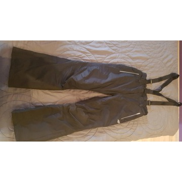 Spodnie narciarskie męskie 'S' 4F SPMN300