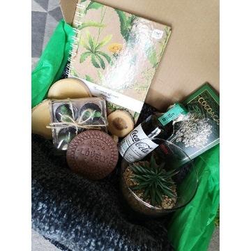 Mega box kaktus