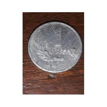 1 grosz z 1949 roku