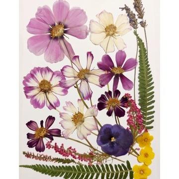 Suszone kwiaty do żywicy i pod witraże, 21x30 mix4