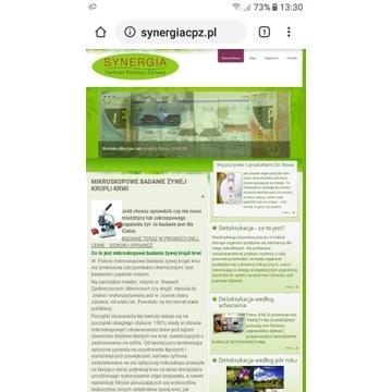Domena synergiacpz.pl (fotowoltaika,zdrowie)