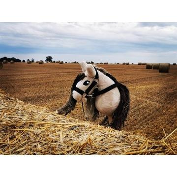 Koń Hobby Horse na kiju + zestaw - Rodriquez