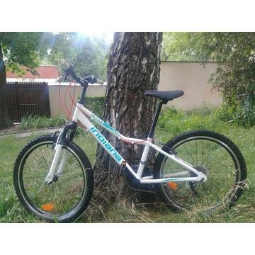 Rower górski dla dzieci Indiana Roxy Jr