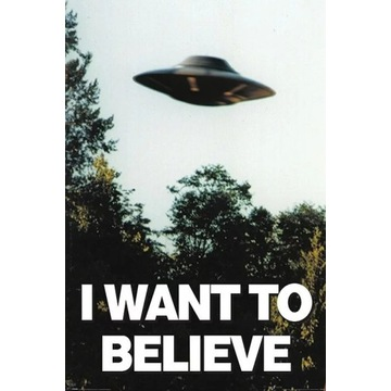 Plakat The X-Files - I Want To Believe  61,5x91