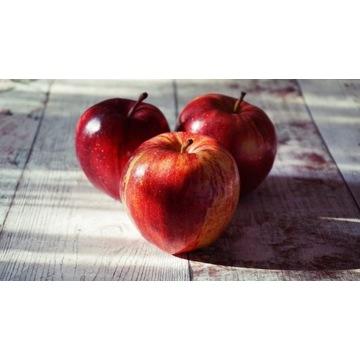 Jabłka bez nawozów