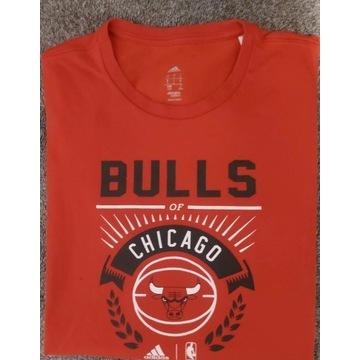 T-shirt koszulka Adidas Chicago Bulls rozmiar L