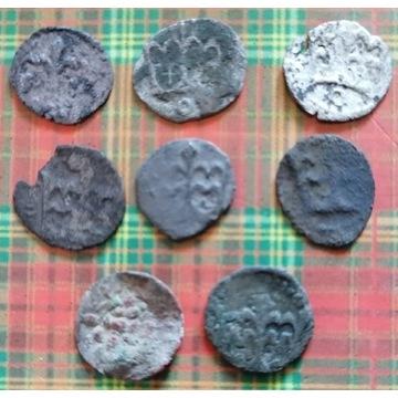 Denarki Jagiellońskie - zestaw 8 monet
